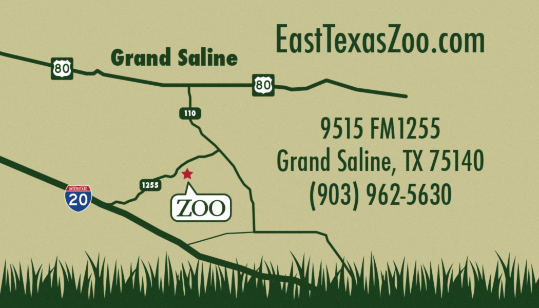 East Texas Zoo – Branding